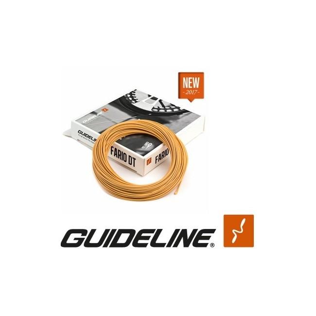 Guideline - Fario DT
