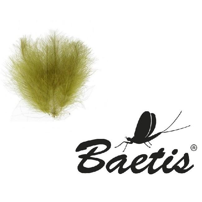 Baetis - CDC 1gr