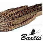 Baetis Coda di Fagiano Naturale
