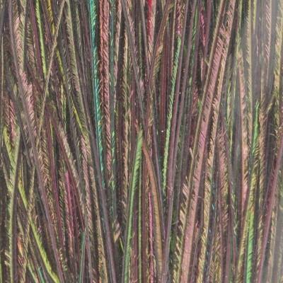 Baetis - Fibre di Pavone rosso